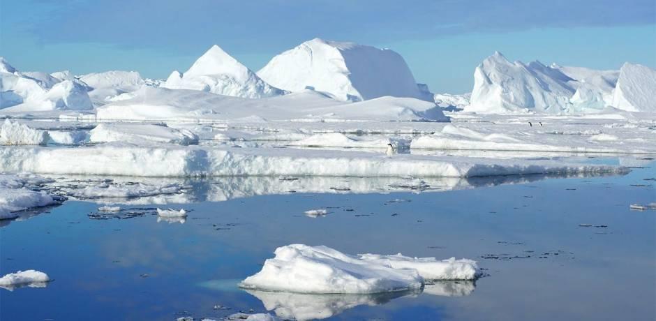 L'Arctique a perdu 95% de sa glace la plus ancienne et la plus épaisse