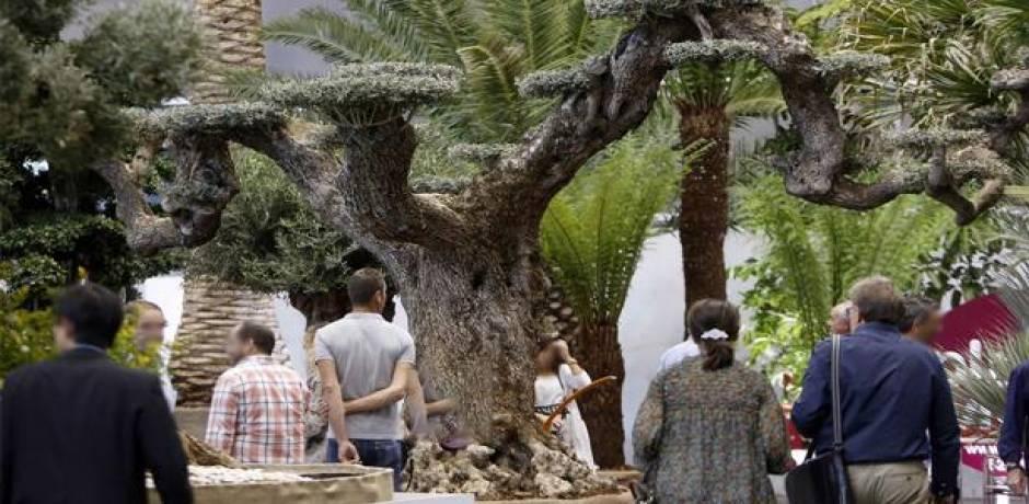 فرانس 2 : نحو 30 ألف متقاعد فرنسي جعلوا من المغرب بلدهم الثاني خلال فصل الشتاء