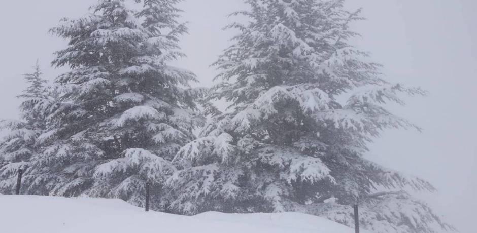نشرة جوية خاصة بتساقط الثلوج