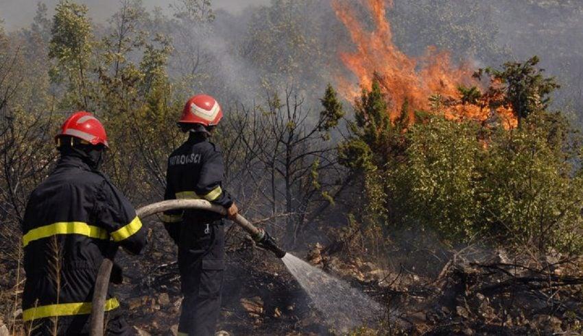 شفشاون : ارتفاع المساحة المتضررة من حريق غابة عشاشة إلى 470 هكتارا