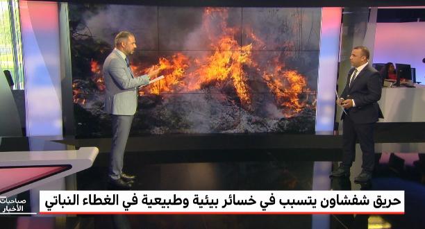 حريق شفشاون يتسبب في خسائر بيئية وطبيعية في الغطاء النباتي