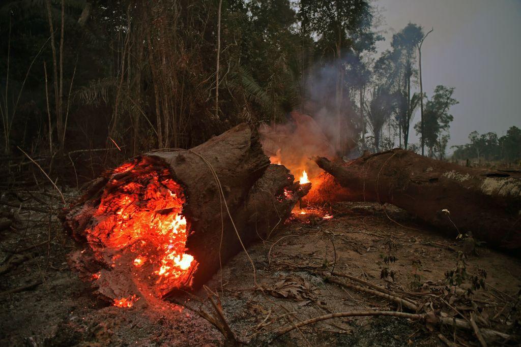 البرازيل .. الحرائق في غابة الأمازون تواصل تقدمها